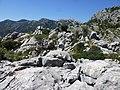 Landschaft am Refugi Tossals.jpg