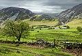 Lanthwaite Green, Crummock - panoramio.jpg