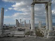 Laodicea (40)