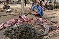 Laos (4014167075).jpg