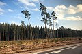 Latvia - panoramio (5).jpg
