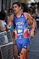 Laurent Vidal Pontevedra2011 1.jpg