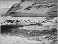 Lhasa - P173 - The hot springs of Kang-ma.jpg