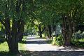 Lichtenrader Graben 20140429 28.jpg