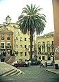 Lissabon Palme.JPG