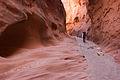 Little Death Hollow - Slot Canyon (3685118040).jpg