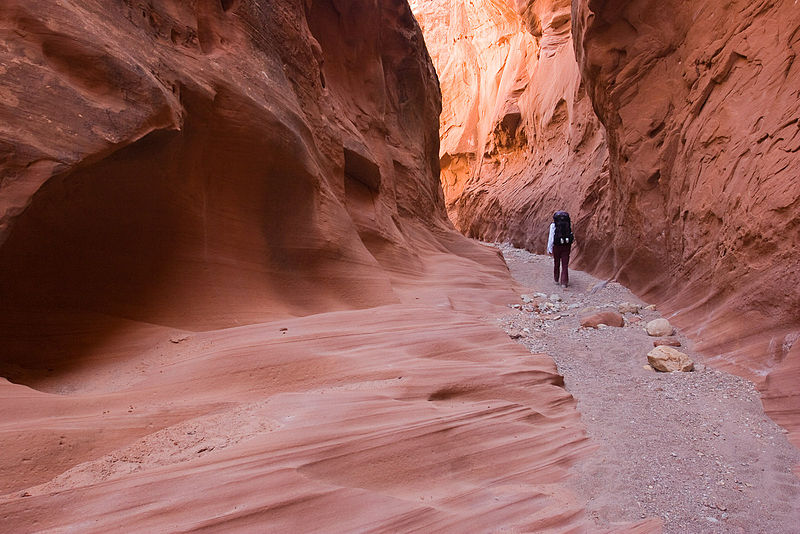 File:Little Death Hollow - Slot Canyon (3685118040).jpg