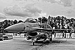 Lockheed Martin F-16 C Block52+ Fighting Falcon (16452623875).jpg