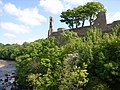 Looking up to the castle walls - geograph.org.uk - 832003.jpg