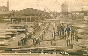 Lumber yard - A lumber yard sorting table in Falls City, Oregon
