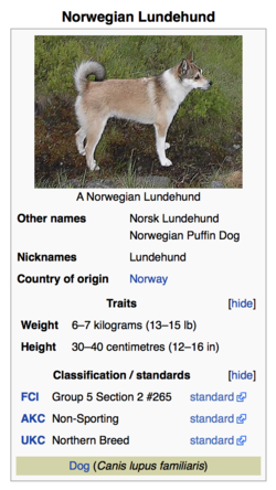 Lundehund.png