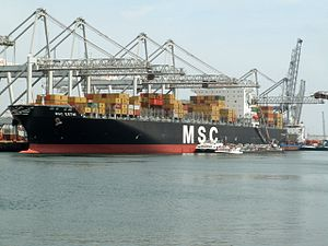 MSC Esthi, at Port of Antwerp, Belgium 18-Jun-2006.jpg