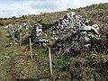 Maes-y-mynydd (3) - geograph.org.uk - 1262560.jpg