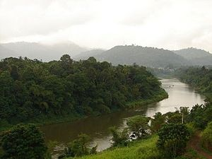 Mahaweli River - Mahaweli River flowing through Gampola