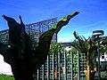 Mai - Botanischer Garten Freiburg - 2016 - panoramio (9).jpg