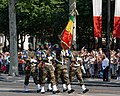 Malian troops Bastille Day 2013 Paris t104520.jpg