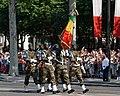 Malian troops Bastille Day 2013 Paris t104520.jpg