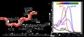 Malvidin-3-glucosid VIS-pH.png