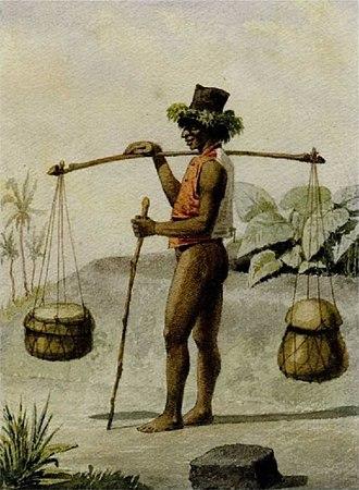 1852 Constitution of the Kingdom of Hawaii - Image: Man of the Hawaiian Islands by Carl Skogman, 1852