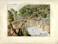 Manuel María Paz (watercolor 9057, 1853 CE).png