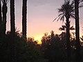 Marrakesh - 2008 - panoramio (55).jpg