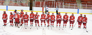 McGill Martlets ice hockey - McGill Martlets, a Champions'great team