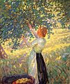McNicoll,Helen Galloway-The Apple Gatherer.jpg