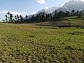Meadow of Kalam, Swat.jpg