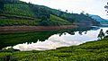 Megamalai Thoovanam dam.jpg
