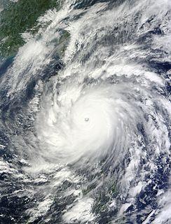 Typhoon Megi (2010) Pacific typhoon in 2010