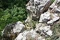 Messelstein near Donzdorf - panoramio.jpg