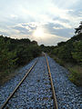 Methoni Pierias, abandoned line.jpg