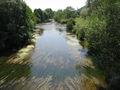 Meuse à Domrémy2.JPG