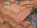 Microsyenite dike (Precambrian; Michipicoten River Bridge South roadcut, south of Wawa, Ontario, Canada) 25 (47924859641).jpg