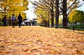 Midoricho, Tachikawa, Tokyo 190-0014, Japan - panoramio (3).jpg