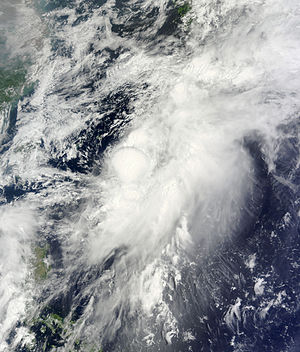 Timeline of the 2014 Pacific typhoon season - Tropical Storm Mitag at peak intensity on June 11