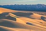 Mojave Trails National Monument dunes.jpg