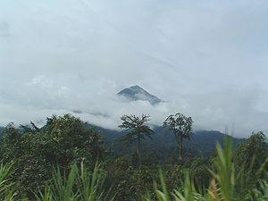 Vue du Mont-Cameroun à partir de la route de Limbe