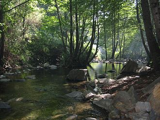 Tordera (river) - The Tordera in the Montseny near its sources