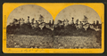 Monument Park, Col. Ter, by Chamberlain, W. G. (William Gunnison).png