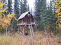 Moose Creek Shelter Cabin cache.jpg