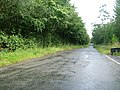 Morland Road, Stanley Bank Plantation - geograph.org.uk - 1428006.jpg