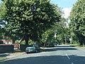 Moss Road - geograph.org.uk - 2533048.jpg