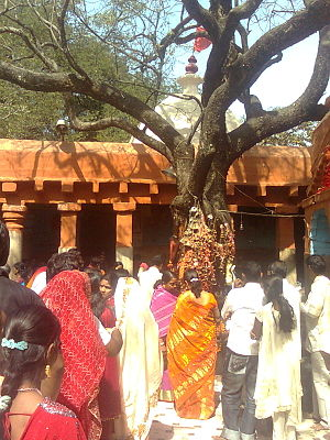 Paschim Bardhaman district - Image: Mother Kalyaneshwari Temple, Maithan 77