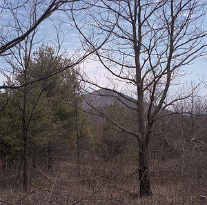 Mount Pleasant National Scenic Area - Image: Mount Pleasant, Virginia