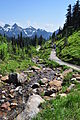Mount Rainier - Paradise - Moraine Trail - August 2014 - 01.jpg