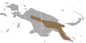 Mountain cuscus - Image: Mountain Cuscus area