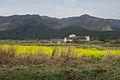 Mt. Aso caldera 阿蘇外輪山 (456730038).jpg