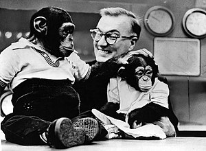 J. Fred Muggs - J. Fred Muggs (left) and companion, Phoebe B. Beebe, with Dave Garroway, 1954