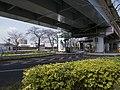 Mukojima in Shuto Expressway 2016-03-08.jpg